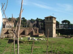 Circus Maximus - Ripa District Rome